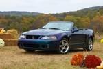 2004_Mustang_Mystichrome_Cobra.thumb.jpg