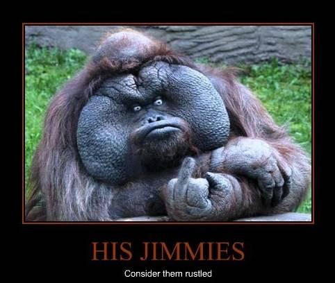 jimmies-consider-them-rustled_zpsc5d2fdcf.jpg