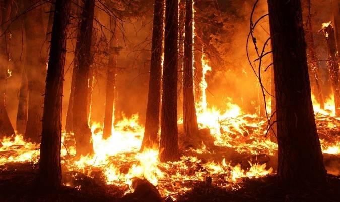 wildfire-1105209_960_720-675x400.jpg